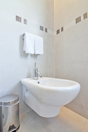 Bin and a bidet in the bathroom. Stock Photo - 17082144