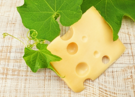 A slice of delicious Dutch cheese on a background of grape leaves  photo