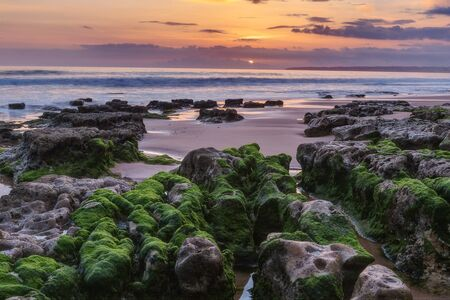 gale: Marine magical landscape before sunset. Green algae on the rocks. Albufeira beach Gale.