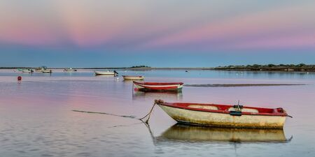 pink sunset: Panorama harbor with fishing boats on a pink sunset.