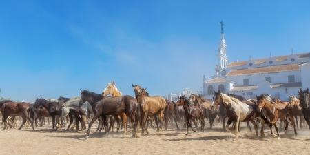 bautismo: Panorama de los caballos que corren antes del bautismo. El Roc�o, Espa�a. Foto de archivo