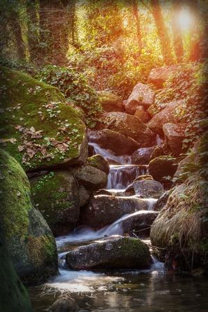 source d eau: source d'eau magique du paysage � l'automne.