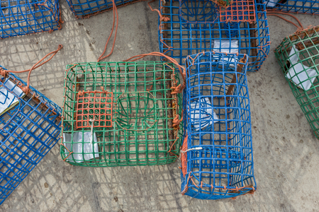 traps: Plastic Octopus traps and molluscs. With shiny bait.