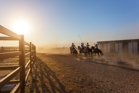 escorted: Horses running in corral at sunset. Riders escorted. Stock Photo