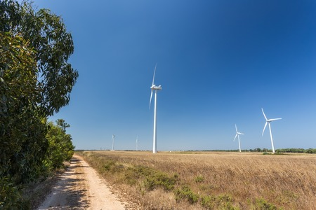 The road near the forest, a Wind generators. Portugal.