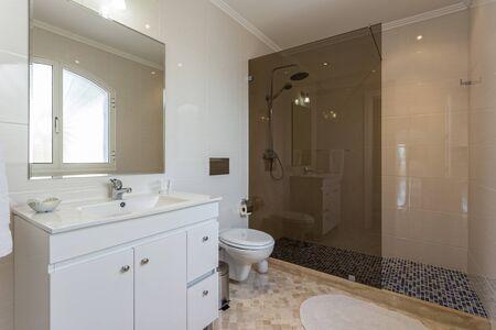 Stylish bath shower rooms in contemporary decor.