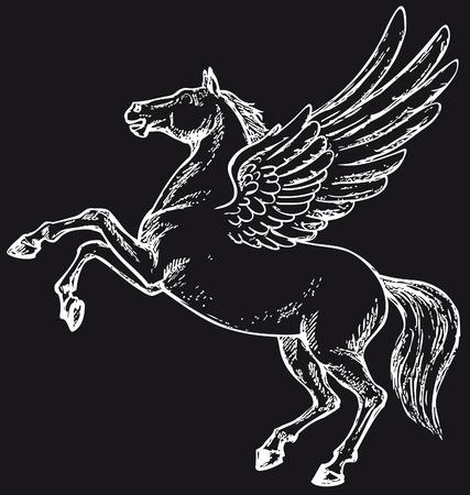invented: pegasus