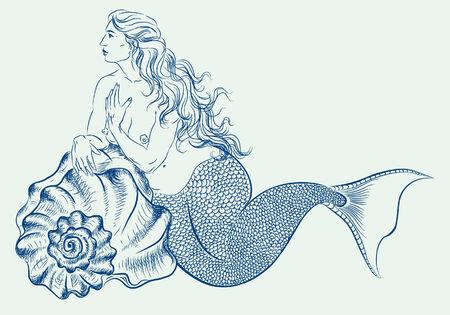 mollusc: mermaid Illustration