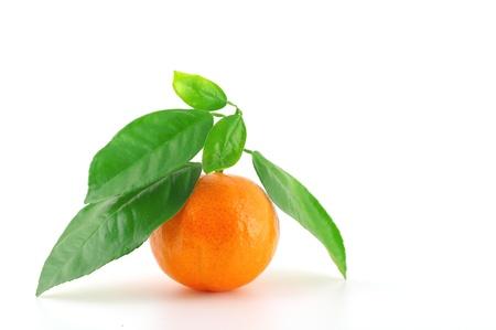 Ripe fresh mandarine with green leaves over white Stock Photo - 12085536