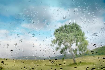 Drops of rain on the window. Unfocused autumn landscape with tree. photo