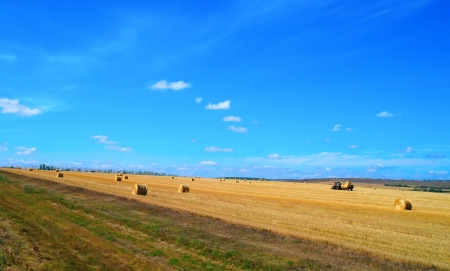Beautiful rural landscape, harvesting. Blue sky with clouds photo