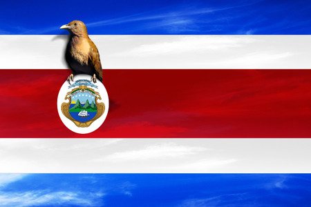 COSTA RICA, CENTRAL AMERICA, Independence Day, 15 September - Manipulated image of national bird on Costa Rica flag.