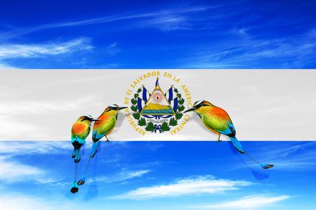 EL SALVADOR, CENTRAL AMERICA, Independence Day, 15 September - Manipulated image of national bird sitting on a El Salvador flag. Editorial