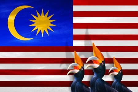 MALAYSIA, SOUTH EAST ASIA, Malaysia Day, 16 September - Manipulated image of national birds looking at Malaysian flag.