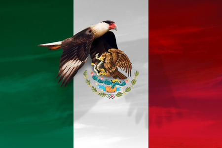 MEXICO, CENTRAL AMERICA, Independence Day, 16 September - Manipulated image of national bird flying over Mexican flag.