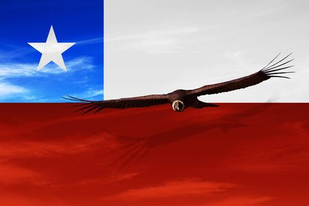 CHILE, SOUTH AMERICA Independence Day, 18 September - Manipulated image of national bird flying over Chilean flag.