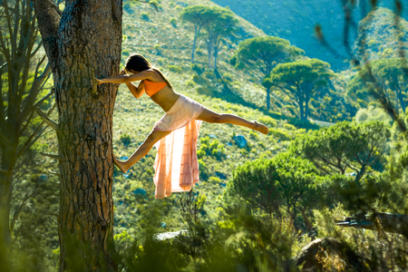 Beautiful woman climbing a tree in a forest with mountain in the background.