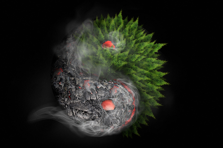 Destruction and Rebirth.  3D Rendering of Yin Yang symbol incorporating lava flow and vegetation regrowth following volcanic eruption in Hawaii.