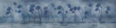 Illustration idea for Hurricane Florence making landfall. Stock Photo