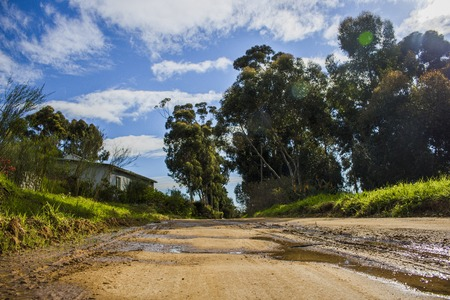 Wet rural dirt road surrounded my trees and a home with blue skies and clouds. -  Napier, Western Cape, South Africa.