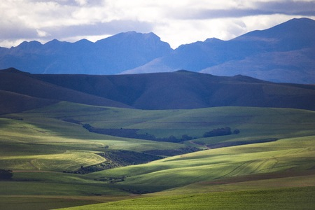 Rolling green agricultural fields with mountains in the background - Caledon, Western Cape - South Africa. Stock Photo