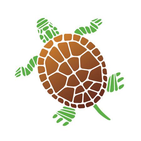 green turtle: Turtle. Vector Illustration