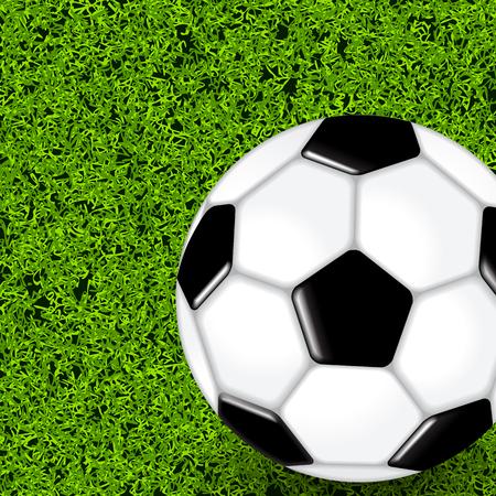 speelveld gras: Voetbal bal op groen gras veld