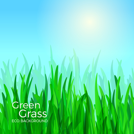 Green grass vector background illustration.