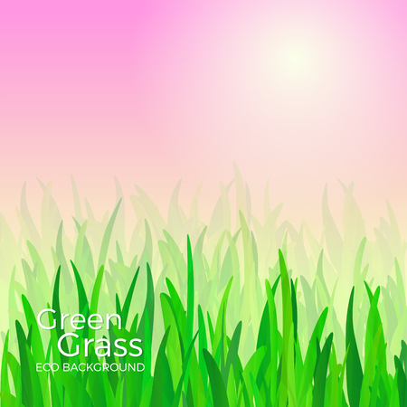 Green grass vector background illustration.