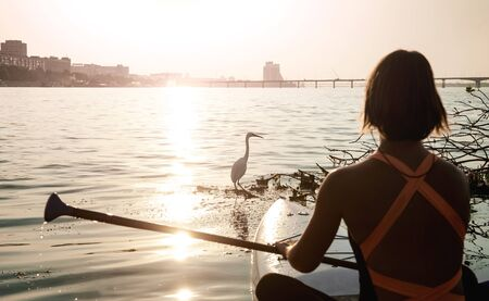 Unity with nature. Beautiful young woman sitting on a stand up paddle board. Watching the sunset. Bird silhouette