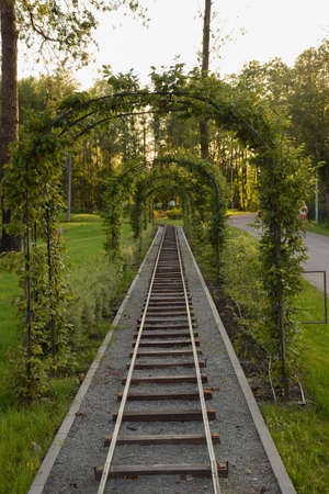 Children's railway in a summer park in perspective with an arch made of climbing green plants Imagens