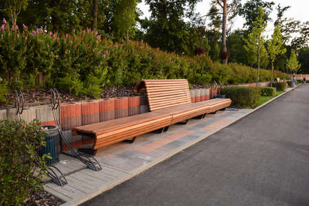 Large empty wooden brown bench in a summer park. Behind her are flower bushes