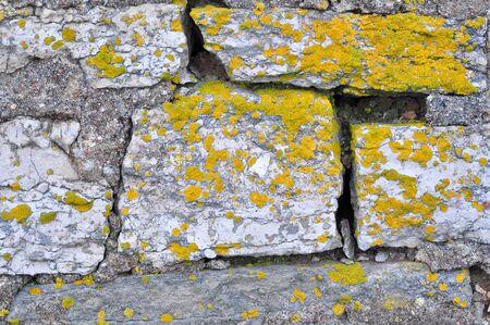 Rocks and lichen. Brick masonry of the old barn.