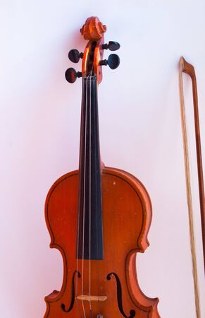 Musical instruments. Violin on a white background.