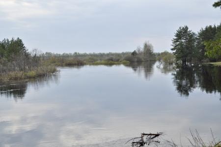pra: May the landscape. River PRA, the national Park