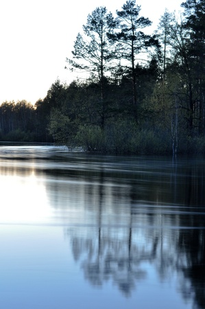 Landscape with pine trees on the banks of the river after sunset. Russia, spring.