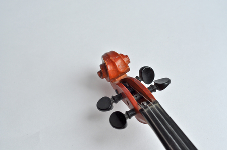 guise: In the guise of a violin is something exciting and fascinating