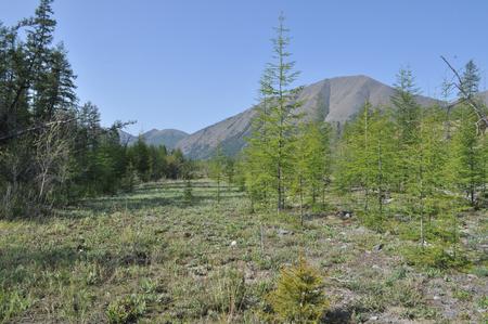 The broad valley between the mountains. Russia, Yakutia, Oymyakon highlands, a ridge of Suntar-khayata. Stock Photo