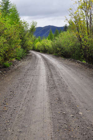 dirt road after the rain in the Yakut taiga at the end of summer photo