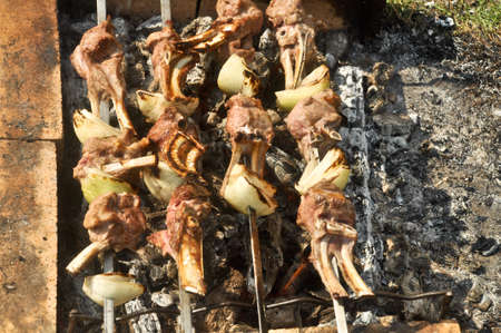 Picnic with barbecue  Cooking meat on skewers over hot coals