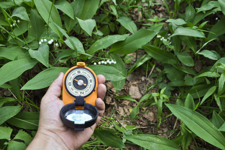 Forest, may, walk in the woods. Compass in hand, against the background of blooming lilies. photo