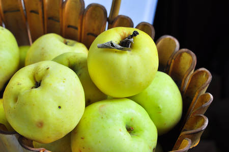 Ripe autumn apples in the basket. Group autumn yellow and green apples. Stock Photo