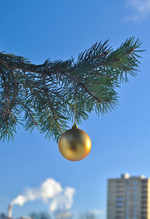 Against the blue sky Golden ball hanging from the branch of a Christmas tree.