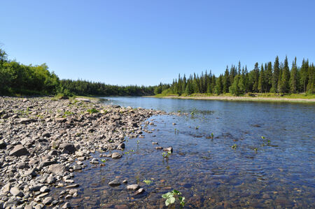 riverbed: Pebble river in the Urals. The channel North of the river under the sun.