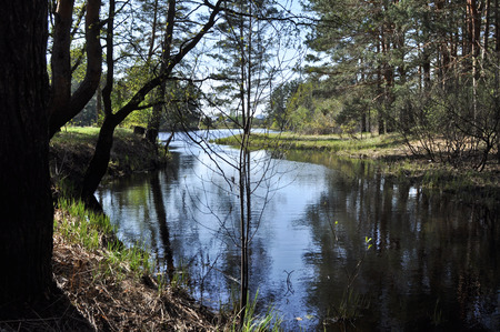 backwater: Quiet river backwater in the spring. National Park Meshchera in the Ryazan region, Russia. Stock Photo