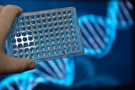 DNA のテスト。写真は、科学的背景にディープウェル プレートします。