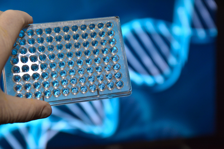 forensic medicine: The DNA testing. Photo well plates at a scientific background.