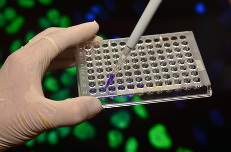 biomedical: In the biomedical laboratory. The study of biological sample in a well plate.