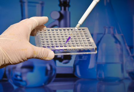 Well plate in the lab. Scientific research in the modern biological laboratory. Stock Photo