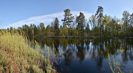 Panorama of the spring river. May water landscape in the national park Meshchersky in Russia.